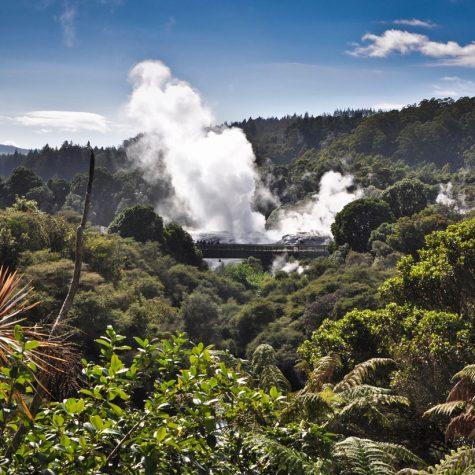 CTI New Zealand-Rotorua