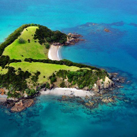 CTI New Zealand-Bay of Islands